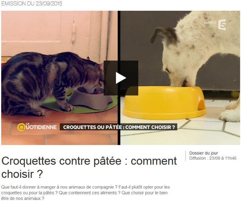 2015-09-23 France 5 La Quotidienne - image reportage Croquette vs patee