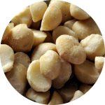 noix de macadamia chien chat