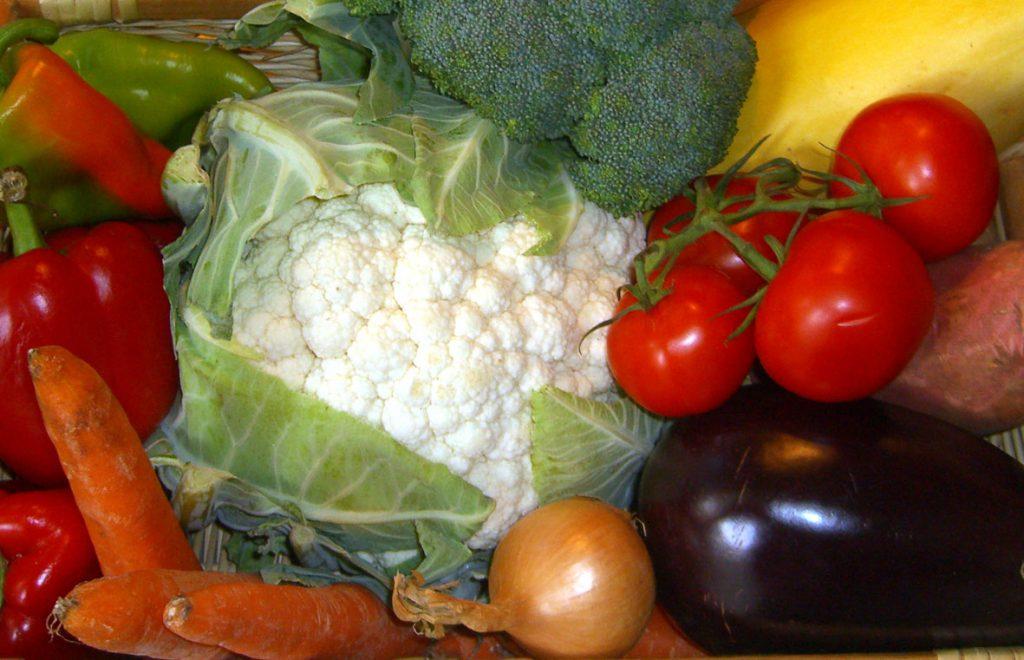 légumes pour chien ou chat bon ou mauvais
