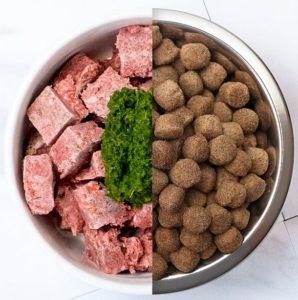 croquettes et viande