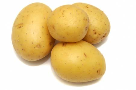 pommes de terre pour un chien