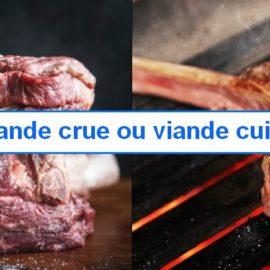 viande pour le chien