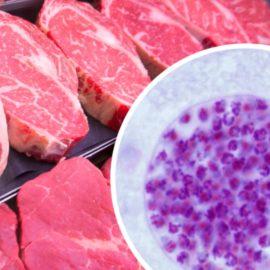 parasites dans la viande