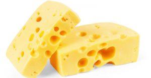 fromage dans l'alimentation des chiens