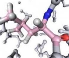 protéines et acides aminés