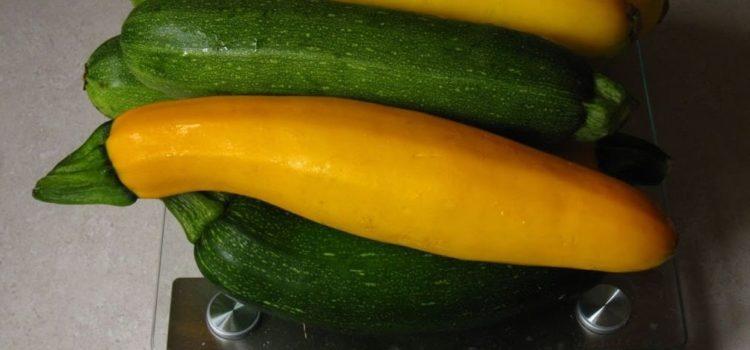 légumes pour un chat